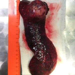 Клинический случай Мэни фото 4